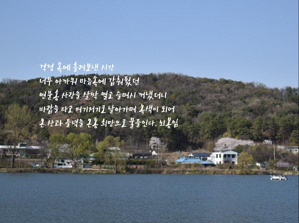 봄이 왔네 편집3.jpg